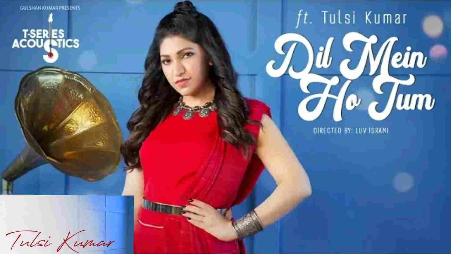 Read more about the article Dil Mein Ho Tum Guitar Chords   Tulsi Kumar   Why Cheat India