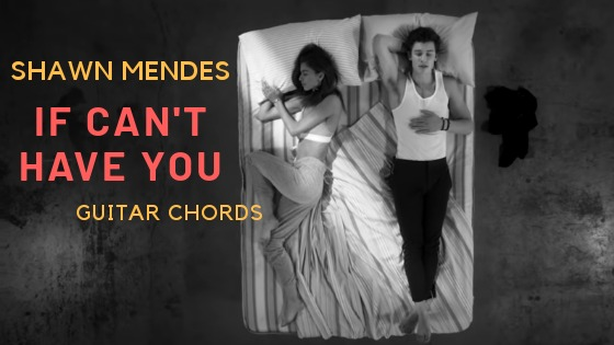 Read more about the article Shawn Mendes – If I Can't Have You Chords