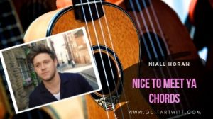 Read more about the article Niall Horan – NICE TO MEET YA CHORDS