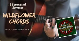 WILDFLOWER CHORDS Guitar Ukulele & Piano – 5 Seconds of Summer