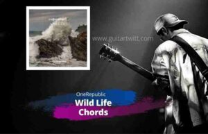 Read more about the article ONEREPUBLIC – WILD LIFE CHORDS for Guitar Piano & Ukulele