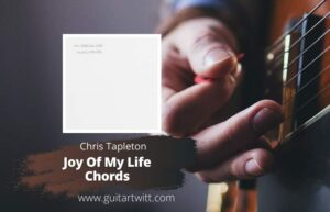 Read more about the article Chris Stapleton – Joy Of My Life Chords