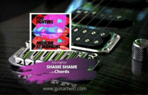 Read more about the article FOO FIGHTERS – SHAME SHAME CHORDS for Guitar Piano & Ukulele