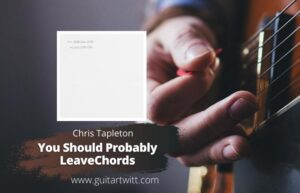 Read more about the article Chris Stapleton – You Should Probably Leave Chords