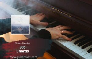 Shawn Mendes – 305 Chords for Guitar Piano & Ukulele