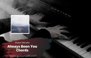 Read more about the article Shawn Mendes – Always Been You Chords