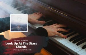 Read more about the article Shawn Mendes – Look Up At The Stars Chords