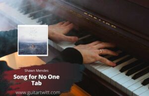 Read more about the article Shawn Mendes – Song For No One Tab
