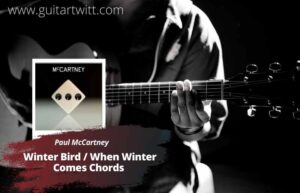Read more about the article Paul McCartney – Winter Bird / When Winter Comes Chords