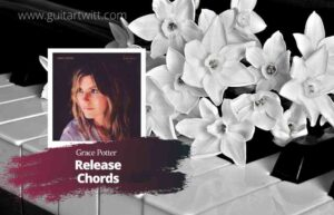 Read more about the article Grace Potter – Release Chords