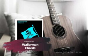 Read more about the article Nathan Evans – Wellerman Chords