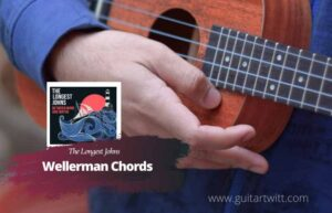 Read more about the article The Longest Johns – Wellerman Chords