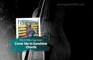 Read more about the article P!nk & Willow Sage Hart – Cover Me In Sunshine Chords