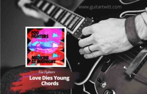 Read more about the article Foo Fighters – Love Dies Young chords