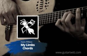 Read more about the article Hayley Williams – My Limb chords