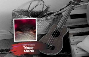 Read more about the article Trigger Chords by Hayley Williams