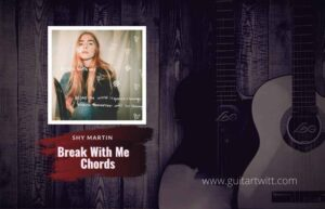Read more about the article SHY Martin – Break With Me chords