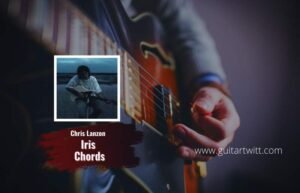 Read more about the article Chris Lanzon – Iris chords