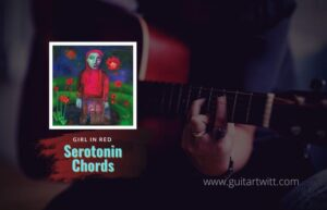 Read more about the article girl in red – Serotonin Chords