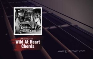 Read more about the article Lana Del Rey – Wild At Heart chords