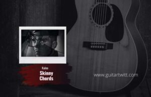 Read more about the article Kaleo – Skinny chords