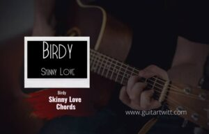 Read more about the article Birdy – Skinny Love chords