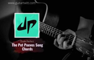 Read more about the article Dude Perfect – The Pet Peeves Song Chords