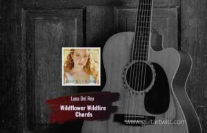 Read more about the article Lana Del Rey – Wildflower Wildfire chords