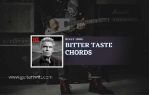 Read more about the article Bitter Taste chords by Billy Idol