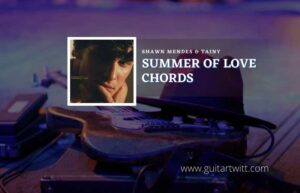 Read more about the article Summer Of Love chords by Shawn Mendes & Tainy