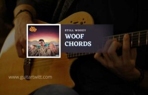Read more about the article Woof chords by Still Woozy
