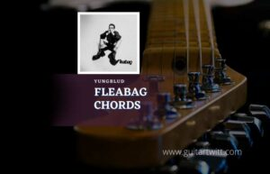 Read more about the article YUNGBLUD – Fleabag chords