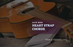 Read more about the article Heart Strap chords by Zack Moss