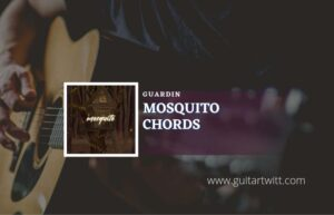 Read more about the article Mosquito chords by guardin