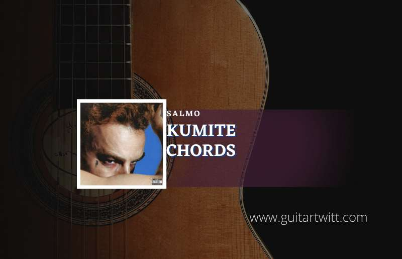 Read more about the article Kumite chords by Salmo